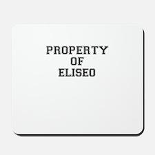 Property of ELISEO Mousepad