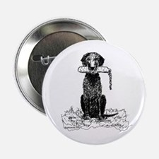 """Curly-Coated Retriever with Bumper 2.25"""" Button"""