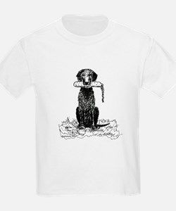 Curly-Coated Retriever with Bumper T-Shirt
