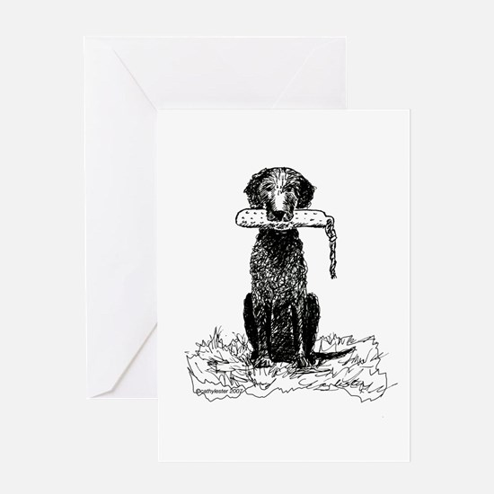 Curly-Coated Retriever with Bumper Greeting Card