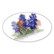 Bluebonnets with Indian Paint Oval Decal