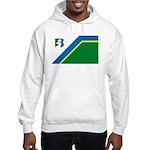 Bayport Flag Hooded Sweatshirt