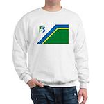 Bayport Flag Sweatshirt