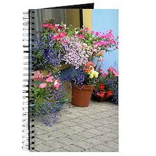 Helaine's Irish Flowers Journal