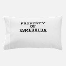 Property of ESMERALDA Pillow Case