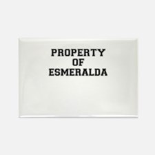 Property of ESMERALDA Magnets