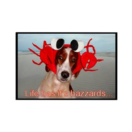 Life has hazzards