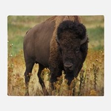 American Bison Throw Blanket