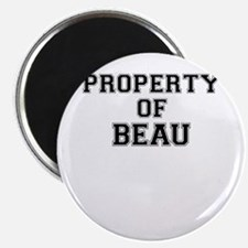 Property of BEAU Magnets