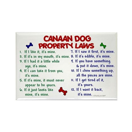 Canaan Dog Property Laws 2 Rectangle Magnet
