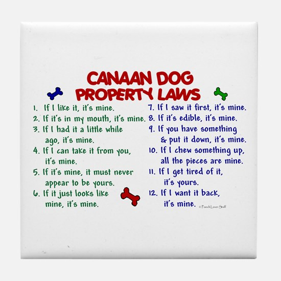 Canaan Dog Property Laws 2 Tile Coaster