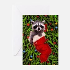 Raccoon in a Stocking Greeting Cards (Pk of 20)
