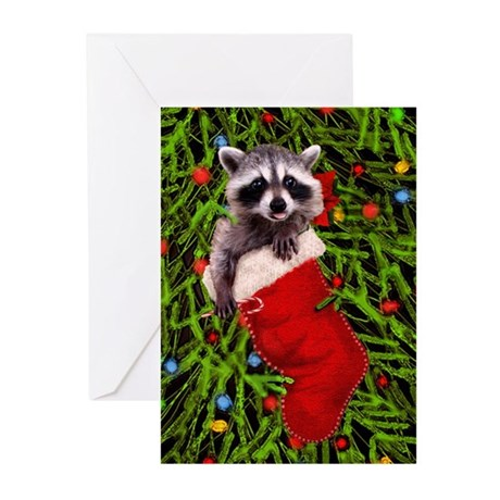 Raccoon in a Stocking Greeting Cards (Pk of 10)