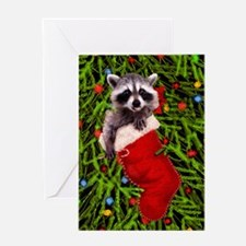 Raccoon in a Stocking Greeting Card