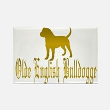 Olde English Bulldogge Gold Magnets