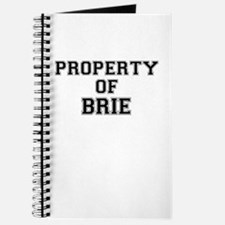 Property of BRIE Journal
