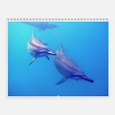 Spinner Dolphins Wall Calendar