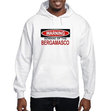 BERGAMASCO Hooded Sweatshirt