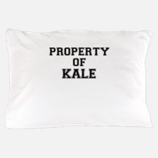 Property of KALE Pillow Case