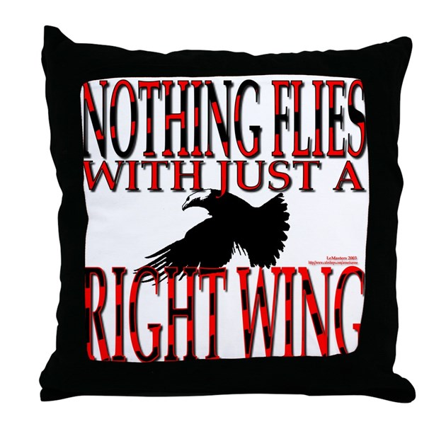 How To Choose The Right Throw Pillows : Right Wing Myth Throw Pillow by aroseisarose