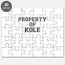 Property of KOLE Puzzle