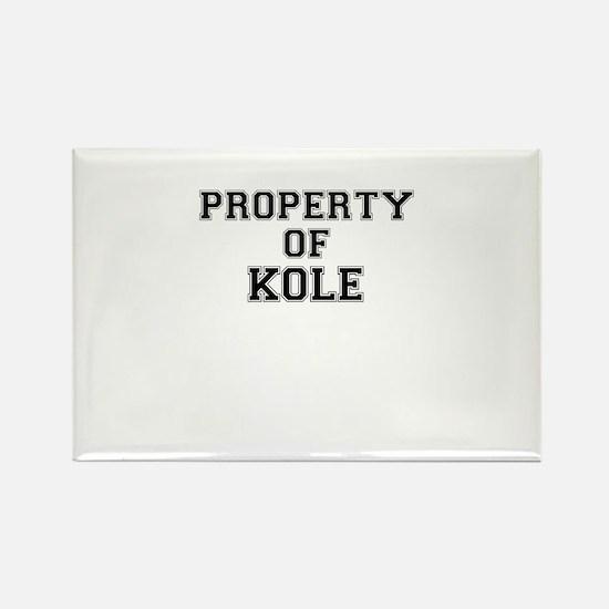 Property of KOLE Magnets