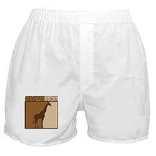 Giraffes Rocks! Boxer Shorts