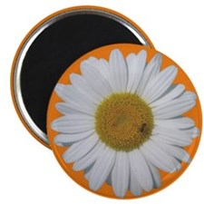 Daisy & Bee<br> Magnet