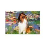 Lilies (2)/Collie (1S) Rectangle Magnet (10 pack)