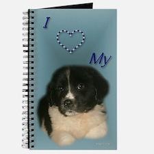 Newfie Puppy Journal