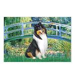 Bridge / Collie (tri) Postcards (Package of 8)