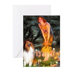 MidEve / Collie (Sbl-Wht) Greeting Cards (Pk of 10