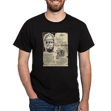 King Arthur Mini Biography T-Shirt