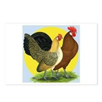 Red Quill Chickens Postcards (Package of 8)