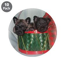"""Little Drummer Cairn Pups 3.5"""" Button (10 pack)"""