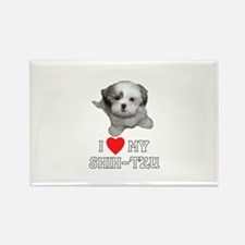 I Love My Shih-Tzu Rectangle Magnet