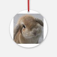 Bunny<br> Ornament (Round)