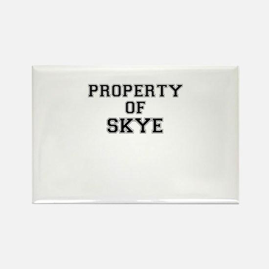 Property of SKYE Magnets