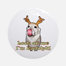 """""""Look At Me"""" Ornament (Round)"""