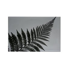 silver fern Rectangle Magnet