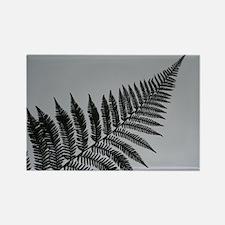 silver fern Rectangle Magnet