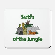 Seth of the Jungle Mousepad