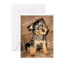SILKY terrier Puppy Dog- Greeting Cards (Pk of 10)