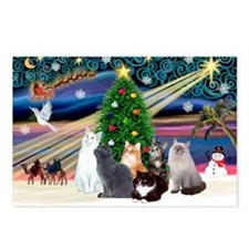 Xmas Magic / Six Cats Postcards (Package of 8)