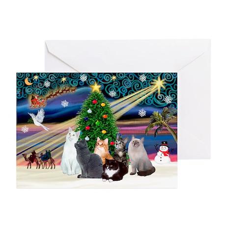 Xmas Magic / Six Cats Greeting Cards (Pk of 10)
