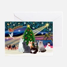 Xmas Magic / Six Cats Greeting Card