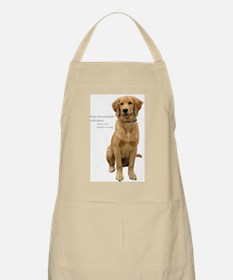 Golden Miracle BBQ Apron