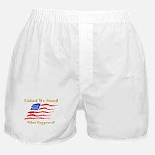 United We Stood #2 Boxer Shorts