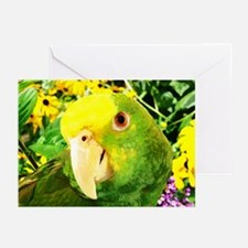 Painting Amazon Parrot Greeting Cards (Pk of 20)