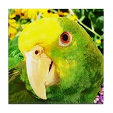 Painting Amazon Parrot Tile Coaster